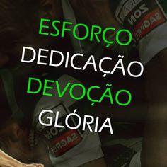 Eis o grande Sporting Clube de Portugal!! #SportingSempre #ondaverde #sportingfans #verdeebranco