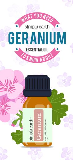 Did you know that geraniums are great for more than just their beauty and aroma? Here, learn about Geranium Essential Oil! Geranium Oil, Geranium Essential Oil, Essential Oil Uses, Doterra Geranium, Moles On Face, Esential Oils, Early Autumn, Sore Eyes