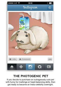 Desde hace tiempo Instagram se ha convertido en la red social más utilizada por los jóvenes, pero también por varios fotógrafos, pues les permite expresar su creatividad al 100 por ciento, pero qué tipo de artistas de la lente hay en la plataforma.