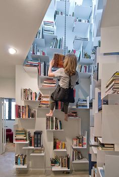 Sallie Trout Climbing bookshelves