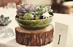 Manualidades, decoración, pintura...: Cactus