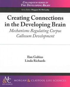 Creating Connections in the Developing Brain: Mechanisms Regulating Corpus Callosum Development