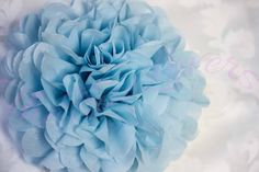 A personal favorite from my Etsy shop https://www.etsy.com/listing/270425984/light-blue1-tissue-paper-pompomssingle