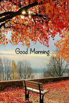 #goodmorning Good Morning Sunrise, Good Morning Nature, Good Morning Happy Sunday, Good Morning Cards, Good Morning Flowers, Good Morning Greetings, Good Morning Good Night, Good Morning Wishes, Good Morning Quotes