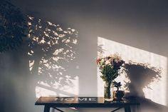 Brunch da Fabi // shadow play photography warm and cozy aesthetics Tumblr Instagram beige photography ideas inspiration: