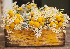 Billy Ball and Mini Daisies Centerpieces - fun!
