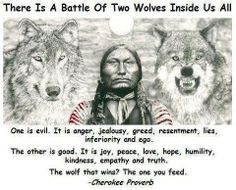 There Is A Battle Of Two Wolves