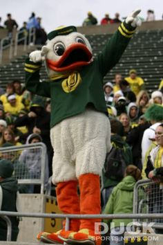 Scoooo Ducks! Getting Pumped!