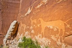 If Trump has his way, all this will be destroyed with mining, drilling and fracking. Bears Ears National Monument, Utah. Stand up and SAY NO!