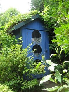 Unique blue garden shed. Almost looks like an adult 'birdhouse'.