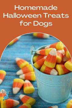 Easy to make and zero sugar - this recipe for homemade look-alike candy corn treats for dogs is perfect for Fall and Halloween. Diy Dog Treats, Dog Treat Recipes, Dog Food Recipes, Homemade Halloween Treats, Homemade Candies, Corn Dogs, Dog Snacks, Candy Corn, Corn Syrup