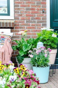 kleine voortuin inrichten Container Gardening, Gardening Tips, Balcony Garden, Balcony Ideas, Go Outside, Outdoor Living, Outdoor Structures, Green, Porches