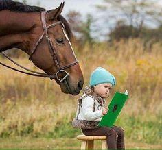 Mi cara, que estupidez Großartig Schnappschüsse lustige Tiere pferd Konzepte Mi cara, que estupidez Animals For Kids, Animals And Pets, Baby Animals, Funny Animals, Cute Animals, Pretty Horses, Horse Love, Beautiful Horses, Animals Beautiful
