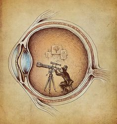 Extraordinary Observer by Enkel Dika