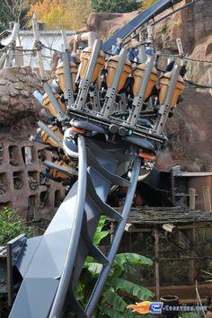 16/20 | Photo du Roller Coaster Black Mamba situé à @Phantasialand (Allemagne). Plus d'information sur notre site http://www.e-coasters.com !! Tous les meilleurs Parcs d'Attractions sur un seul site web !!