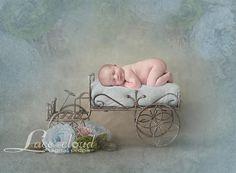 Digital backdrop 4 JPG newborn background flower iron car