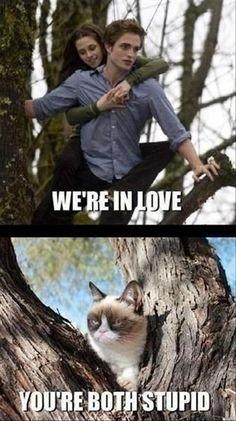 Random Funny Pictures –