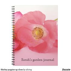 Shirley poppies up close notebooks
