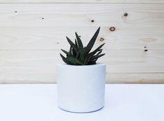 Übertöpfe - Weißbeton-Blumentopf für Sukkulenten - ein Designerstück von IndustrialRepublic bei DaWanda