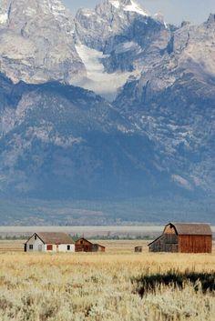 Grand Teton Farm