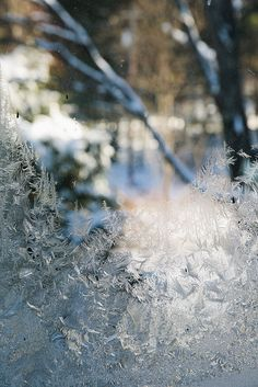 Frost by Nicole Franzen Photography, via Flickr