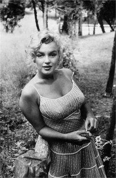 Marilyn Monroe photographed by Sam Shaw ~ 1957 Classic Hollywood, Old Hollywood, Art Marilyn Monroe, Cinema Tv, Norma Jeane, Jolie Photo, Portraits, Foto E Video, Movie Stars