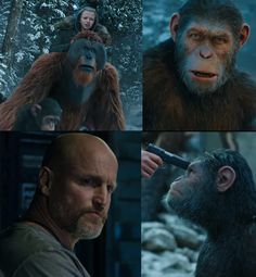 War for the Planet of the Apes final trailer: Caesar and his army of apes declare war on humans and Woody Harrelson is our last… #FansnStars