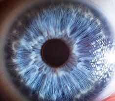 Vue en relief d'un oeil bleu de face 15 photos de l'oeil comme vous ne l'avez jamais vu ! | Medisite