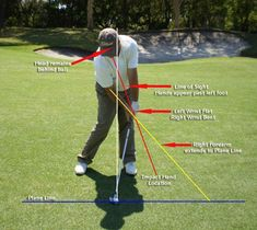 An excellent demonstration of the correct body position at impact. #golf