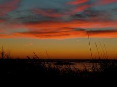 De. Bay Nov. 8th 2012