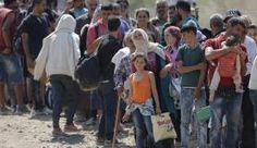 Refugiados na fronteira da Grécia com a Macedônia Alguém tem que fazer algo com esses países , de onde vem os refugiados.