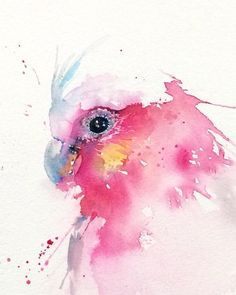 Galah illustration PRINT from my Australian by ChristyObalekYou can do this with colored pencils! Get a set of 48 Aurora colored pencils for only $10! http://aurora-artsupplies.com