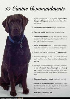 Ten Canine Commandments