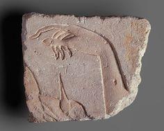 A Royal Hand, New Kingdom, Dynasty 18, reign of Akhenaten, ca. 1349–1336 B.C.  Egyptian  Limestone, traces of paint