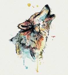 wolf art and beautiful image Aquarelle Watercolor Animals, Watercolor Art, Watercolor Wolf Tattoo, Animal Paintings, Animal Drawings, Howling Wolf Tattoo, Wolf Canvas, Aquarell Tattoos, Wolf Artwork