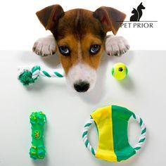 Giocattoli per Cani Pet Prior 3,86 € https://shoppaclic.com/giochi/6659-giocattoli-per-cani-7569000751006.html