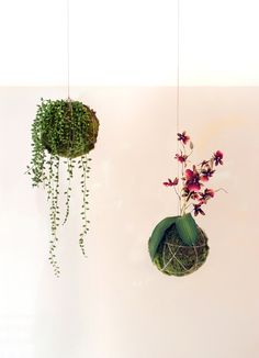 Make kokedama from faux everything - foliage, flowers and moss. DIY hanging string plants are not only no-maintenence, but also super easy to make.