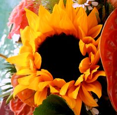 Die Blumen meiner Mutter/Aurora-Mia Cantate