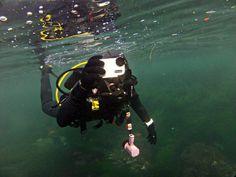 Diving La Jolla with Watershot!