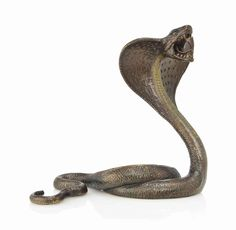 A FRANZ XAVIER BERGMAN (1861-1936) COLD-PAINTED BRONZE MODEL OF A COBRA CIRCA 1900  Price realised GBP 3,250 USD 4,986