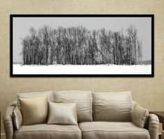 Winter Photography - Large Wall Art, Black and White Photography. $295.00, via Etsy.