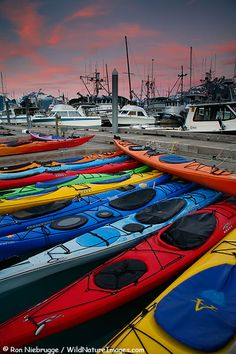Valdez, Alaska : kayak adventure to Columbia glacier Kayaks, Valdez Alaska, Alaska The Last Frontier, North To Alaska, Alaska Adventures, Living In Alaska, Alaska Travel, Canoeing, Psp