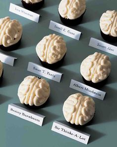 Human Anatomy:  Brain Cupcakes  ha.  The boys would love this