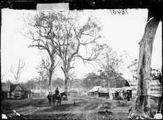 Main Street, Canadian Lead, NSW, 1872. - Photo Credit: Beaufoy Merlin / Charles Bayliss