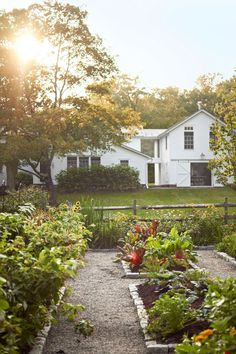 Most Popular Kitchen Garden Design Ideas 29 Farmhouse Garden, Garden Cottage, Garden Beds, Fence Garden, House With Garden, Modern Farmhouse, Farm Gardens, Outdoor Gardens, Courtyard Gardens