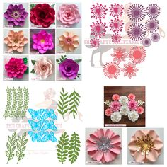 SVG COMPLETE Paper Flower Wall: Flower Template Set- For Cutting Machines Use-Cricut & Silhouette, My To Go Paper Flower Designs for Wall by TheCraftySagAnnie on Etsy
