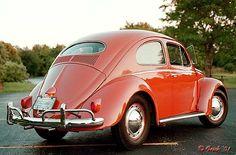 1956 Volkswagon. Love it!