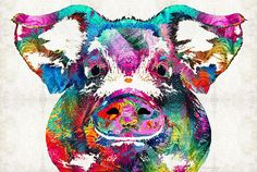 Colorful Pig Art - Squeal Appeal - by Sharon Cummings Fine Art Prints and Posters for Sale #sharoncummings
