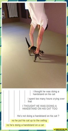 I laughed really hard at this!!