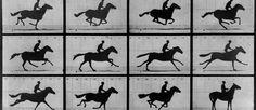 http://mundodecinema.com/cavalo-em-movimento/ - Antes dos irmãos Lumiére já havia um homem a criar filmes sem saber o que estava, na verdade, a fazer. Neste post conheça o filme Cavalo em Movimento.